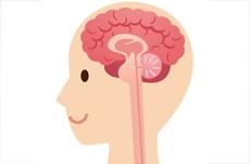認知症700万人時代、「生涯健康脳」のつくり方