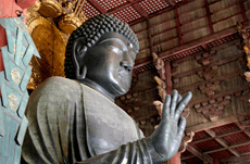 「知識」が造った東大寺の廬舎那仏