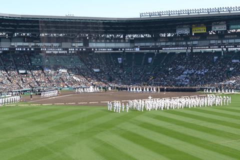 大阪決戦は履正社が起死回生の同点弾も大阪桐蔭が延長で勝利。北海道ではセンバツ暫定一番乗りが決定