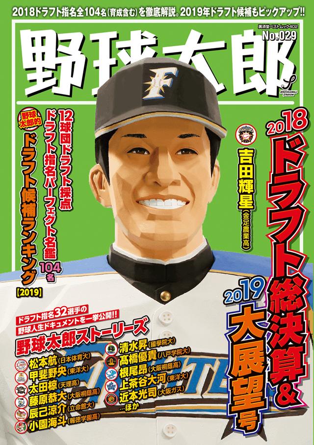 野球太郎No.029 2018ドラフト総決算&2019大展望号 表紙